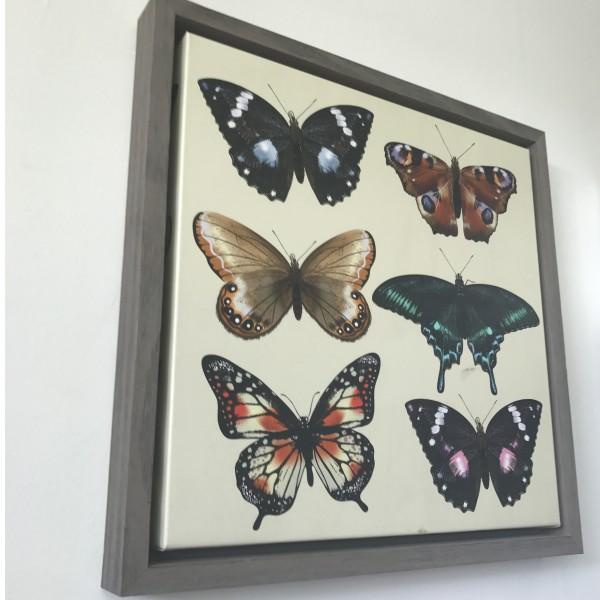 Framed Canvas Photo Prints