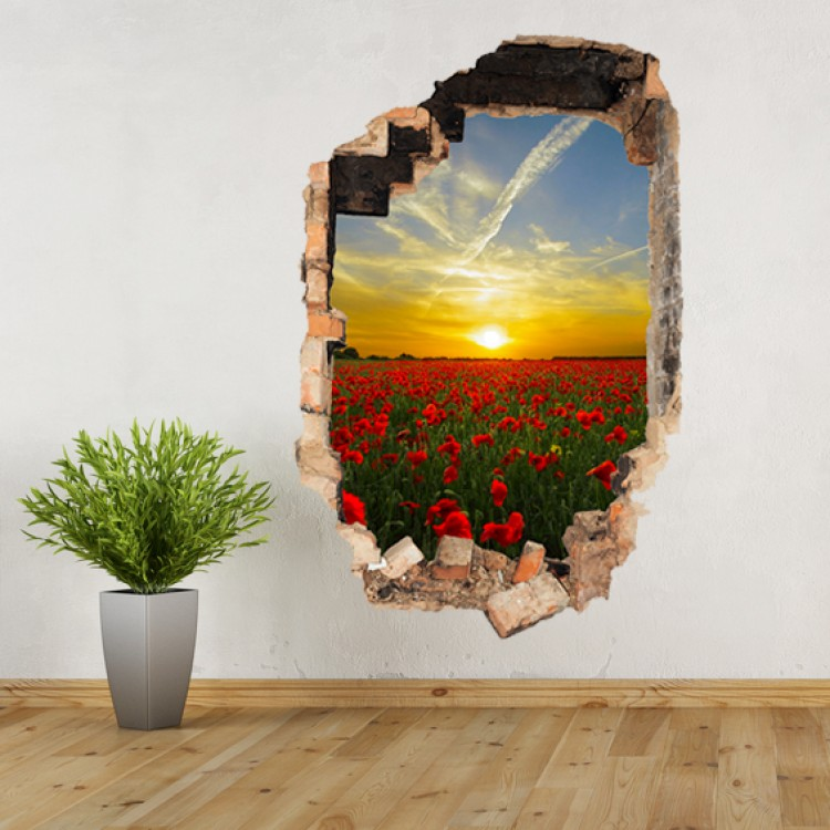 Vinyl Wall Art - Add Your Photo - Hole in Wall Portrait