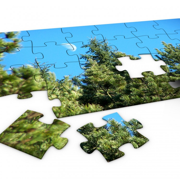 Medium Jigsaw 200 x 290mm (120 Pieces) Landscape